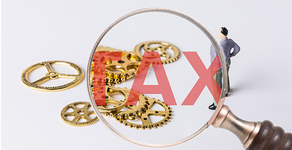 博赢提供的税务服务
